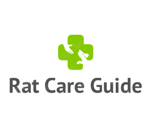 Rat Care Guide